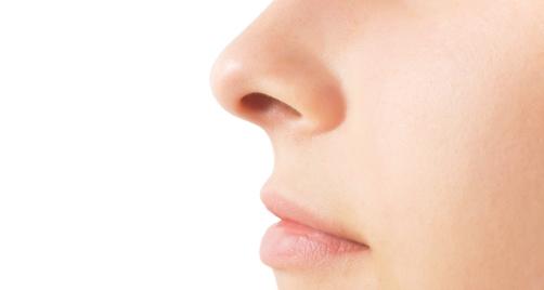 Cánh mũi của chúng ta trông như thế khi nhìn nghiêng đấy.(Ảnh: Internet)
