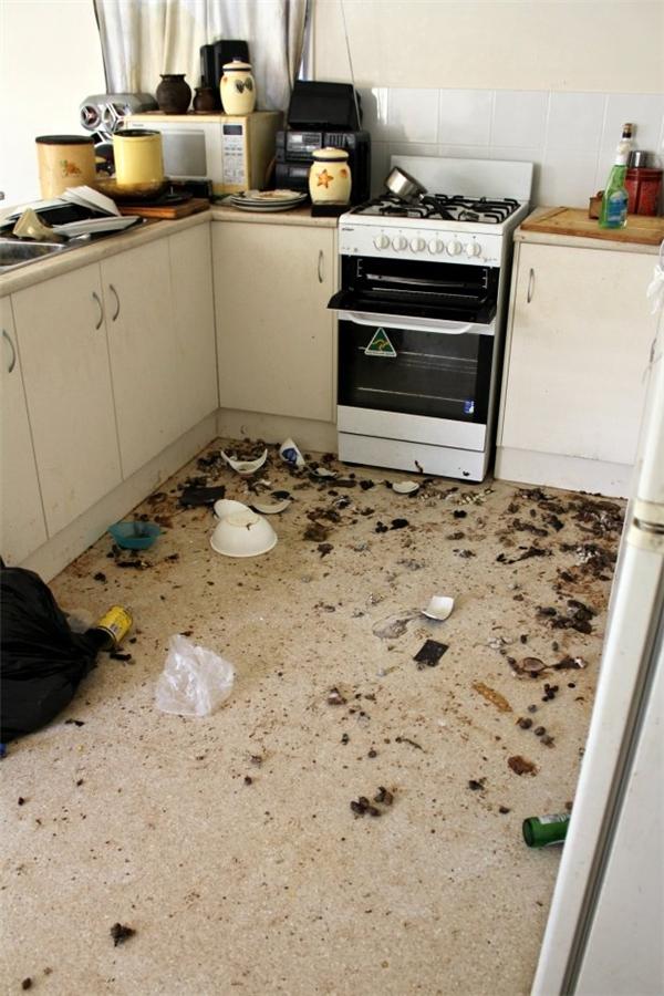 Cảnh tượng trong căn nhà sau cuộc đấu tranh sinh tồn.