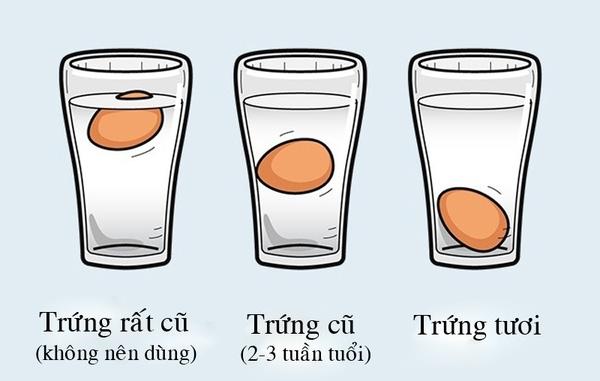 Trứng chìm hẳn là trứng mới, ngược lại, trứng nổi hoàn toàn lên mặt nước là đã quá cũ.(Ảnh: Internet)