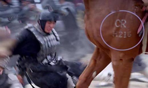 Sao ngựa chiến mã không đánh dấu bằng chữ Hán cổ mà đầy chữ cái Latin thế này?