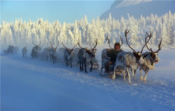 CáchBắc Cực tới2.400 km nhưng Verkhoyansk vẫn có nhiệt độ thấp không tưởng.