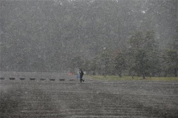Tuyết rơi dày đặc. (Ảnh: Reuters).
