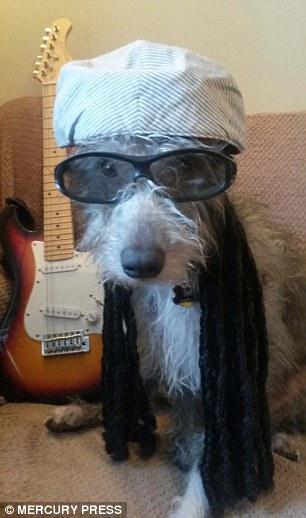 Đây là tấm ảnh Jim thích nhất. Steve hóa trang thànhNile Rodgers.