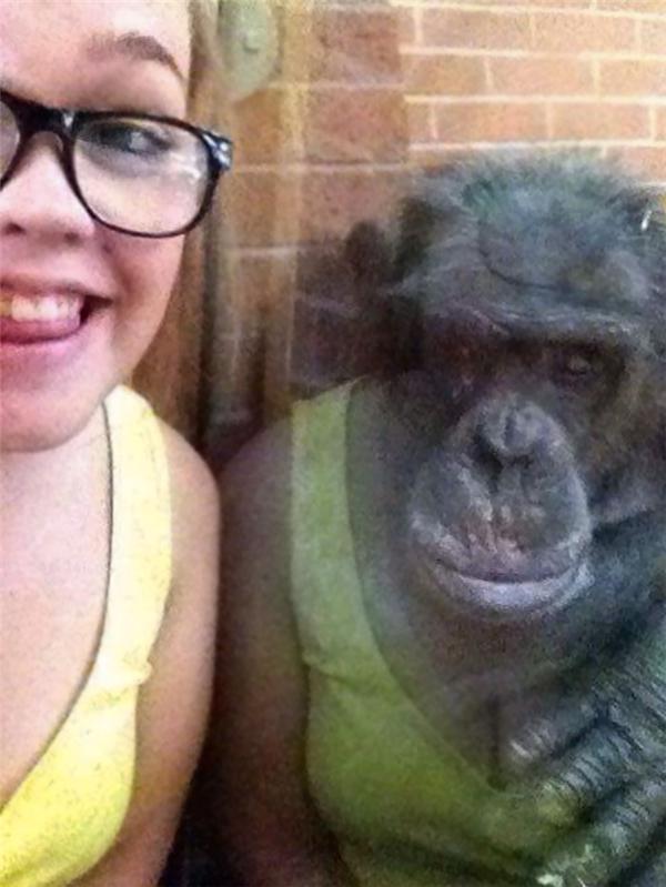 Liệu người khỉ là có thật trên đời?
