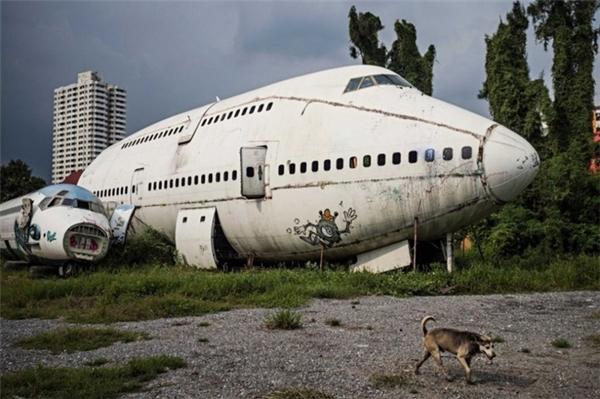 Sau đó, một số hộ gia đình nghèo khó không nơi nương tựa đã chuyển đến sinh sống trong xác của những chiếc máy bay hiện đại.