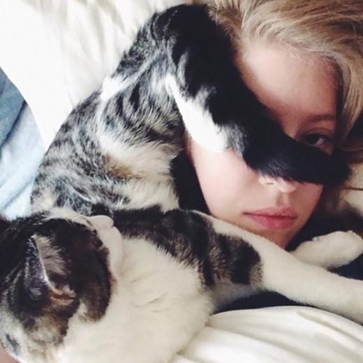 Đắng lòng, dung nhan mỹ miều của cô chủ chẳng qua cũng chỉ là giường ấm, nệm êm của nàng mèo này thôi.