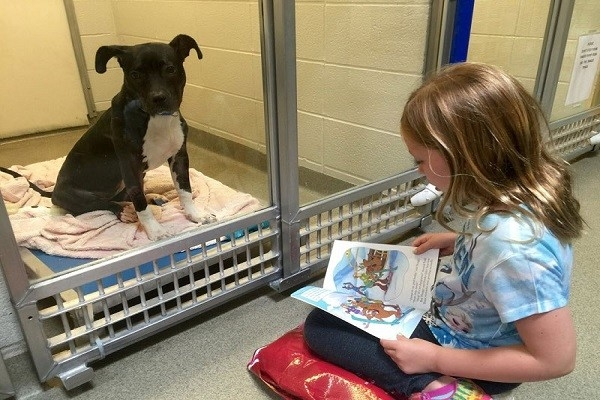 Những cô bé, cậu bé trong độ tuổi từ 6 đến 15 sẽ đến trung tâm này và đọc sách cho những chú cún nghe. (Ảnh: Internet)