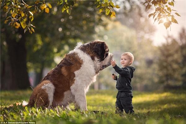 Cậu béMatthew nhẹ nhàng nựng má chú chó Misha có chiều cao lên đến 92cm.