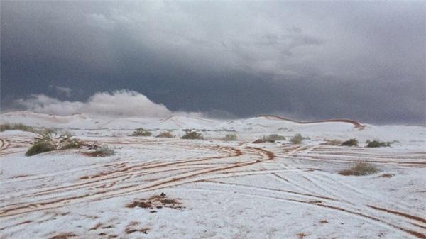Tuyết phủ kín một vùng sa mạc Ả Rập.