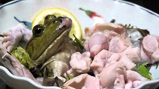 Bước vào nhà hàng Nhật Bản gọi món Sashimi ếch, bạn có bị giật mình khi thấy món ăn?