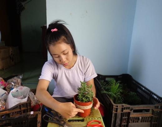 Mai Châu ấp ủ kế hoạch kinh doanh vườn cây cảnh nhằm đảo bảo chất lượng và hạ giá thành đầu ra.