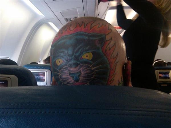Cảm giác thế nào nếu nó cứ nhìn chằm chặp vào bạn bằng ánh mắt rực lửa như thế suốt cả chuyến bay.
