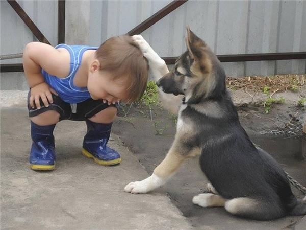 Giỏi lắm thằng em, cúi xuống cho anh xoa đầu cái nào.