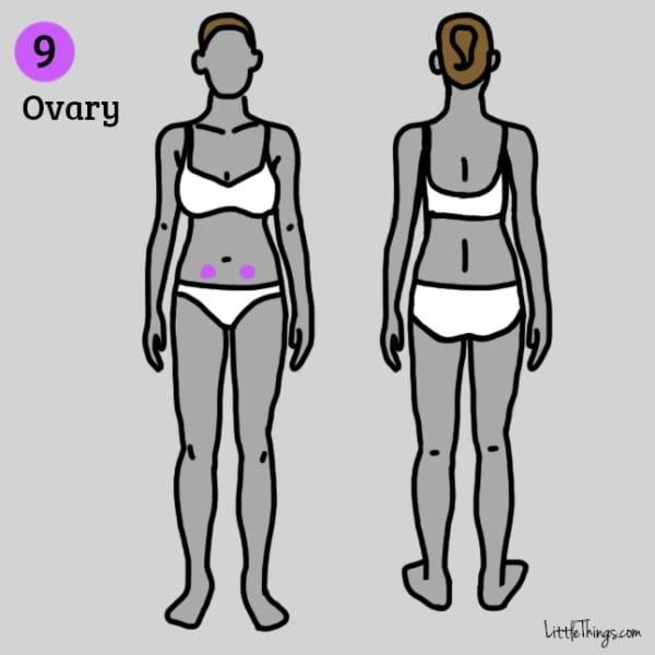 Bệnh u nang buồng trứng có thể khiến bạn bị đau thắt ở một bên vùng bụng