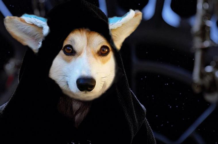 Darth Vader ngày xưa mà xinh trai thế này thì Anakin về team anh chắc rồi.