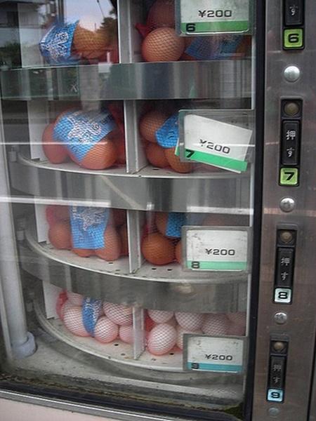 Máy bán trứng tự động.