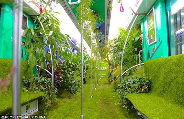 """Cây cối bên trong toa tàu còn """"sống"""" và phát triển.(Ảnh:People's Daily China)"""