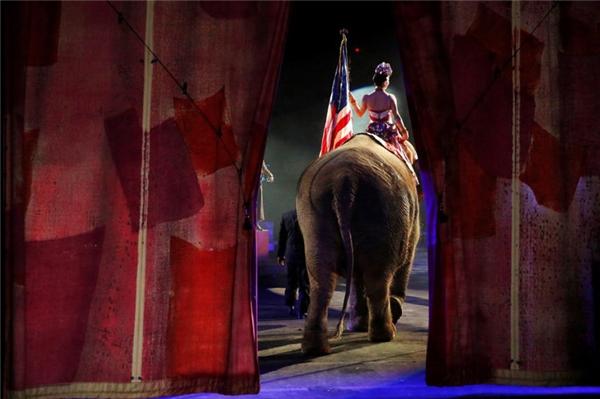Chú voi bước ra sân khấu tại một rạp xiếc ở Wilkes-Barre, Pennsylvania.