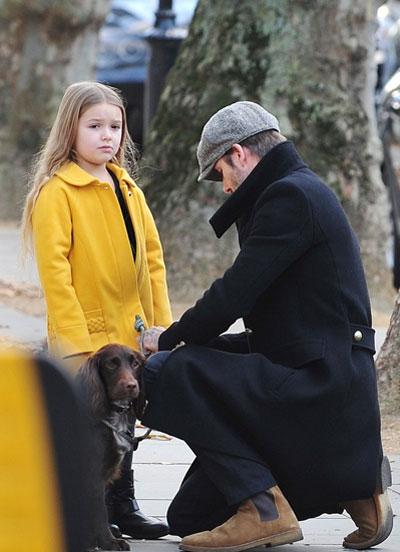 Harper lại trông có vẻ không vui vàphụng phịu với cả bố Beck.