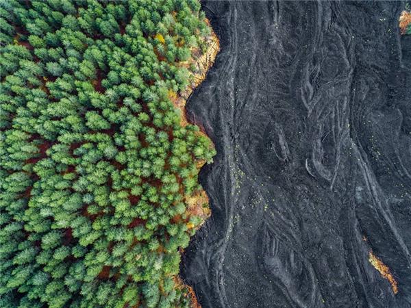 Rừng cây bên dòng sông cát đen, ảnh chụp từ drone của Placido Faranda.