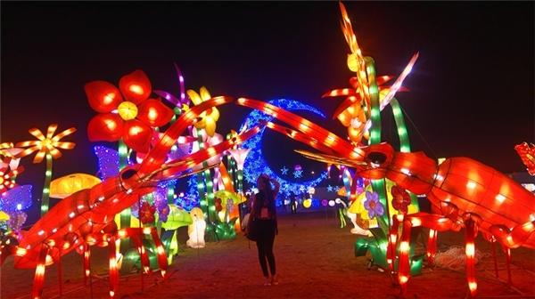 Các bạn trẻ chắc chắn không thể bỏ qua địa điểm chụp hình check in lung linh ánh đèn tuyệt vời như thế này!