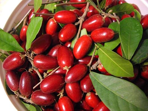 """Là loại trái cây có nguồn gốc từ rừng nhiệt đới Tây Phi. Với màu đỏ bắt mắt, ngon miệng khi chín cùng với hương vị khi vừa mới thưởng thức """"đầu thì chua, sau thì ngọt lịm"""" khiến dân tình mê đắm."""