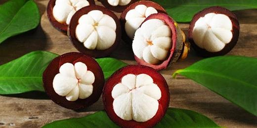 Với màu sắc đỏ tím đậm và bên trong trắng ngà cùng nhiều múi. Những trái măng cụt khiến người ăn muốn ngừng cũng ngừng không được trước hương vị chua ngọt thanh thanh đầy hấp dẫn.