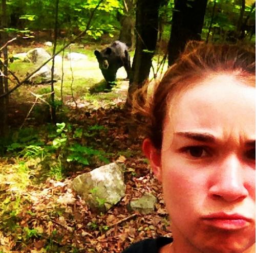 5. Vườn thú này không nên để du khách chụp ảnh cùng với gấu trong khoảng cách gần như thế...