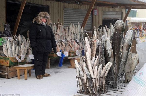 Một cửa hàng bán cá tại Yakutia với toàn bộ số cá bị đóng băng.