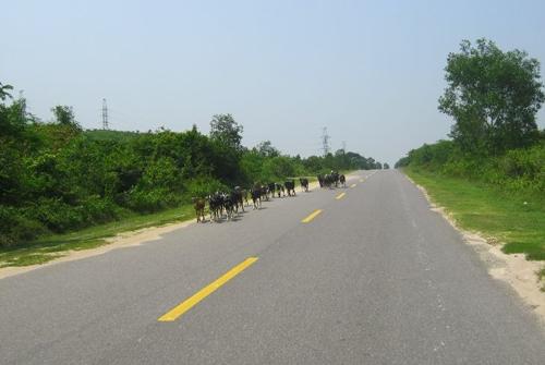 Trong quy chuẩn cũ, để phân định hai chiều xe chạy, vạch kẻ đường tương ứng ở đường trên 60km/h là màu vàng và đường dưới 60km/h là màu trắng.