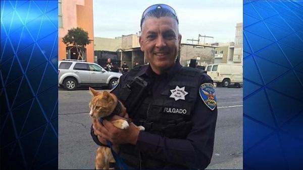 Mạng sống của người đàn ông bỗng chốc nằm trong tay của một chú mèo.(Ảnh: Internet)