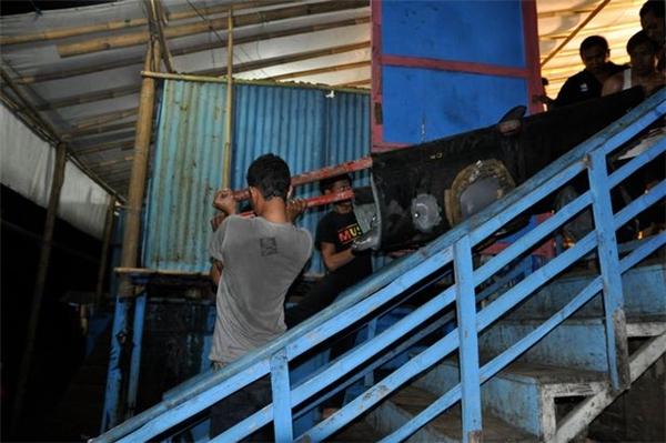 Tất cả cá heo trong các rạp xiếc kia đều đã bị đánh bắt trái phép từ môi trường tự nhiên.