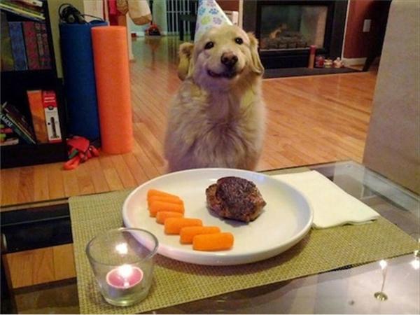 Cảm ơn sen vì đã tổ chức sinh nhật nho nhỏ nhưng ấm cúng cho boss.
