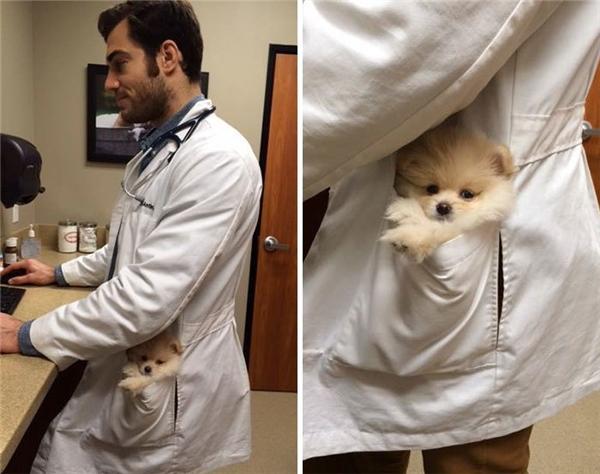 Đừng động vào, đây là bác sĩ của riêng tôi đấy các chị ạ.
