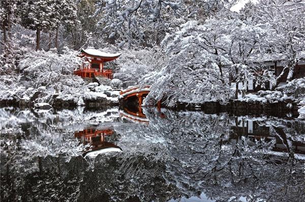 Một ngôi đền bị tuyết phủ trắng xóa ở Kyoto, Nhật Bản.