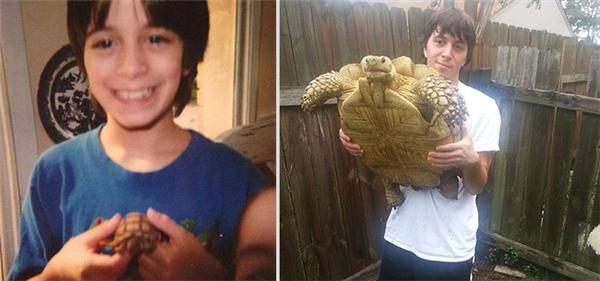 17 năm đánh dấu tình bạn với một chú rùa.