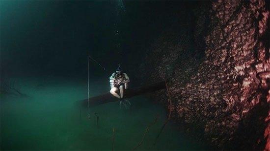 Anh chàng đang ngồi trên cành cây bắc ngang qua dòngsông dưới đáy đại dương.