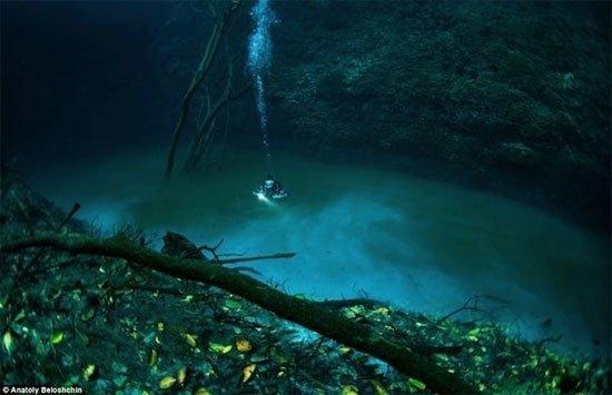 Vớinhững lời miêu tả cùngnhững hình ảnh được anh chàng nhiếp ảnhnày ghi lại cho thấydòng sông dưới đáy đại dương này có vẻ bí ẩn mà đầythu hút.