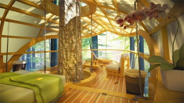 Thân cây khiến cho ngôi nhà càng trở nên độc đáo.