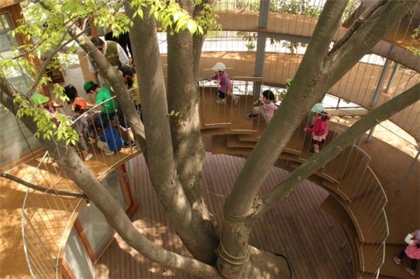 Với cách làm này, trẻ em sẽ học được rằng cần phải yêu quý và bảo vệ cây xanh.