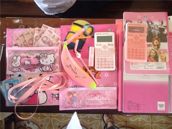 Và đây là một cô gáikhác cũng có sở thích tương tự: Sách vở, máy tính, hộp bút, bút viết đều cùng tông hồng rực rỡ.(Ảnh: Internet)