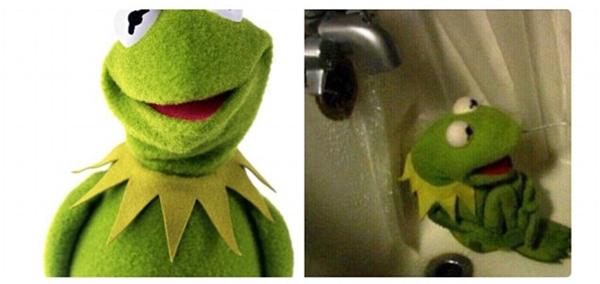 Chú ếch xinh tươi như cây cỏ mùa xuân giờ chỉ muốn thu mình trong bồn tắm mặc dòng đời xô lệch ngoài kia thôi.