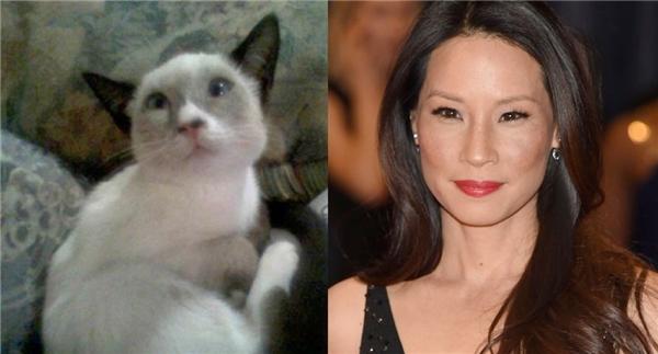Cô mèocó đôi mắt gợi tình và cái miệng không khác gì nữ minh tinh châu Á Lucy Liu.