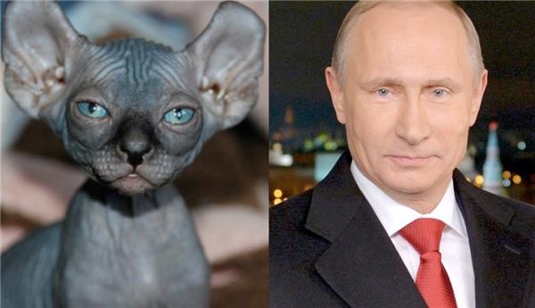 """Tổng thống Nga Vladimir Putin ắt hẳn cũng sẽ nở một nụ cười thân thiện trên gương mặt lạnh lùng cố hữu khi trông thấy """"bản sao"""" này của mình mà thôi."""