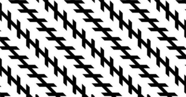 Bạn có tin rằng những đường chéo này song song với nhau? Nếu không thì... bạn nên lấy thước đo lại đi nhé.