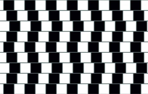 Ban đầu bạn sẽ tưởng là các đường màu xám bị cong, nhưng thực ra tất cả chúng đều đang song song nhau đấy.