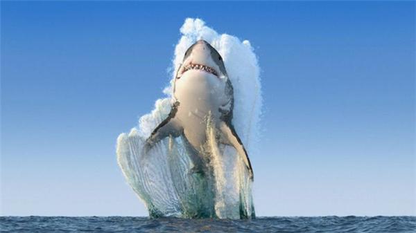 """Hình ảnh mà bạn đang thấy từng được chia sẻ ầm ầm trên các mạng xã hội với danh hiệu """"hình của của năm"""" của National Geographic. Tuy nhiên, đây chỉ là một hình ảnh được thực hiện bằng máy tính bằng cách ghép một số hình ảnh lại với nhau. Sở dĩ người ta lôi National Geographic vào đây là bởi tạp chí này vốn nổi tiếng với những hình ảnh thiên nhiên hoang dã khó tin."""