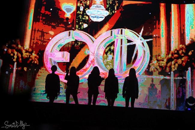 5 cô gái EXID được fan Việt chào đón vang dội khi xuất hiện trên sân khấu.