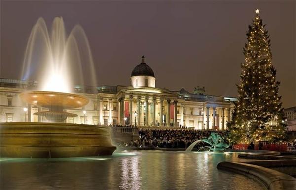 Cũng ở London, một cây thông sáng lấp lánh khác thong dong ngắm thác nước và cảm nhận không khí lễ hội đang tràn về.