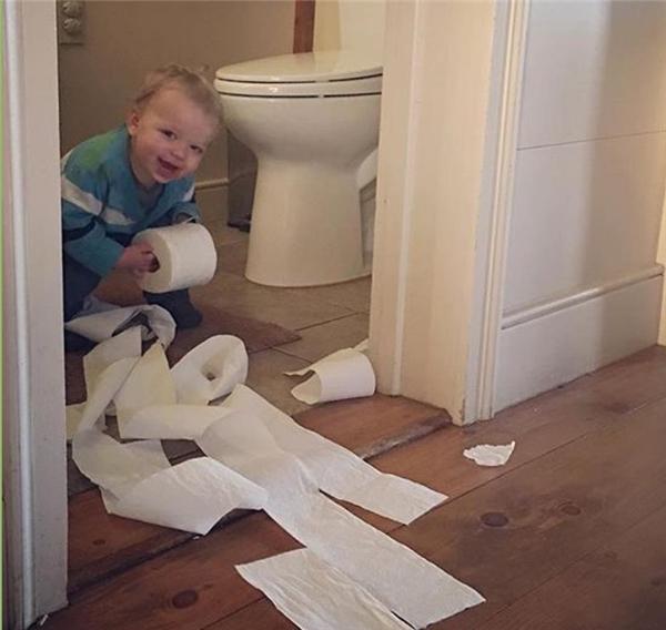 Giấy vệ sinh luôn là phát minh vĩ đại nhất thế gian này.